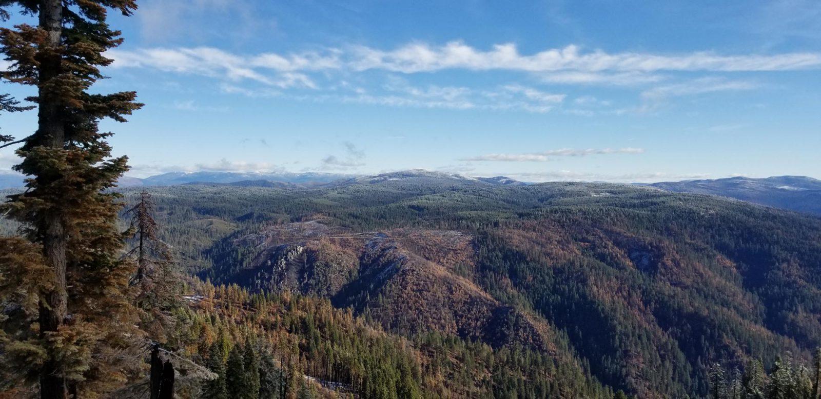 Bear Creek from Lookout Rock